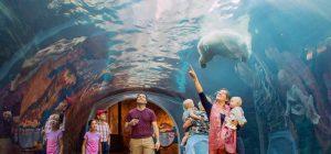 阿西尼博因动物园.jpg