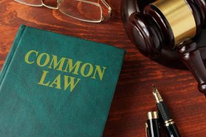 Ontario Common Law Rights (The Essential Guide)